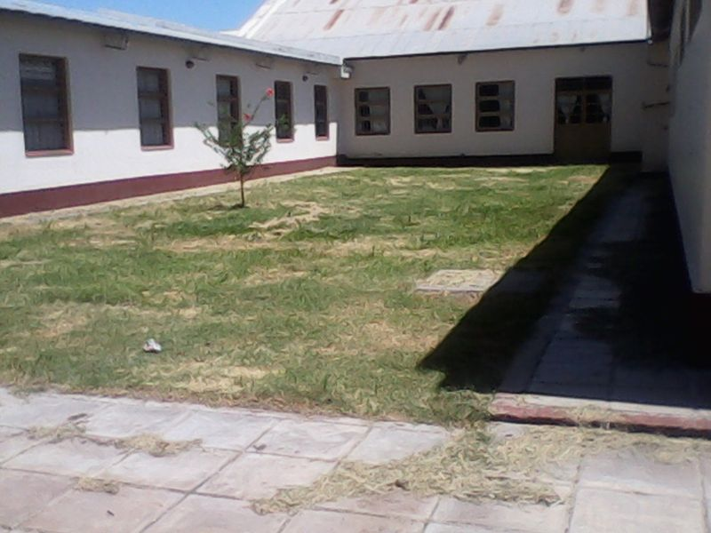 Desmalezamiento escuela Los Lapachos